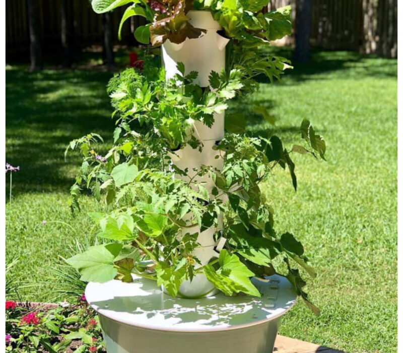 Tower Garden Growing Idea 7