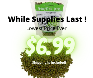 Organic Mung Beans Lowest Ever
