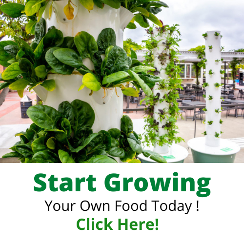 Start Growing With Your Tower Garden